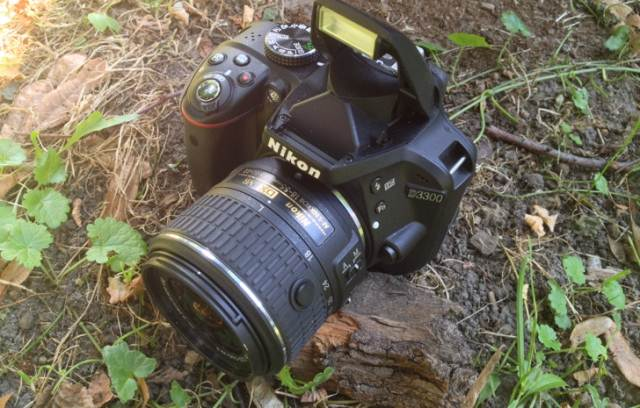 Review Nikon D3300
