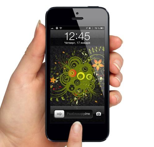 ios-7-code-responsible-work-fingerprint-scanner-iphone-raqwe.com-01
