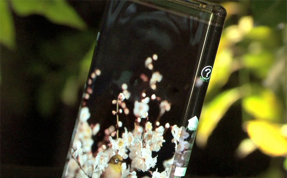 japanese-developed-oled-display-wrapped-smartphone-video-raqwe.com-01