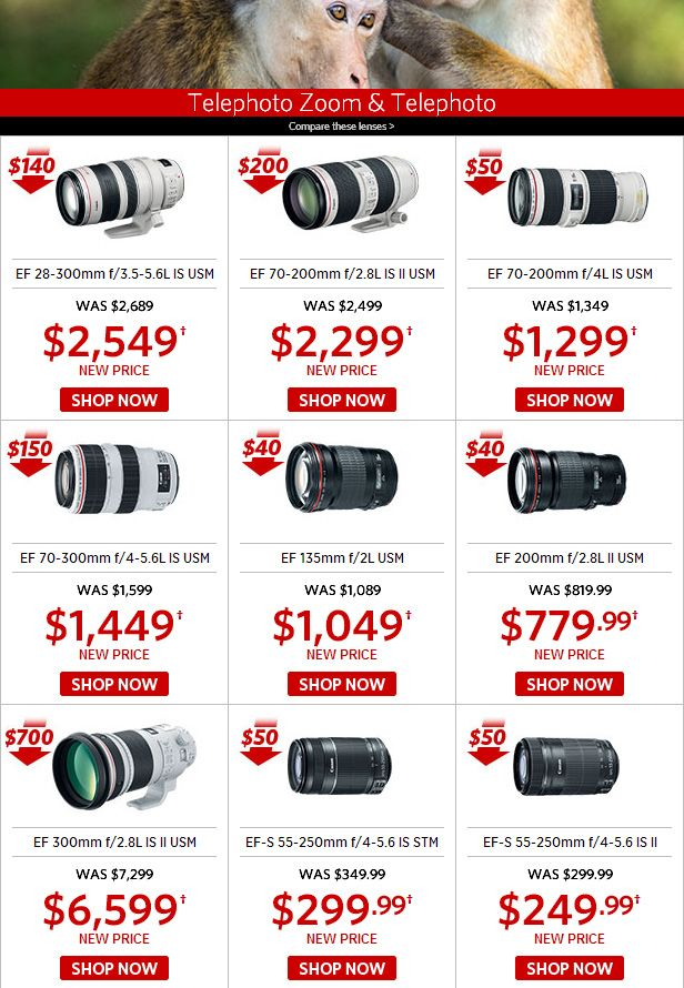 Reducing the cost of a number of Canon lenses