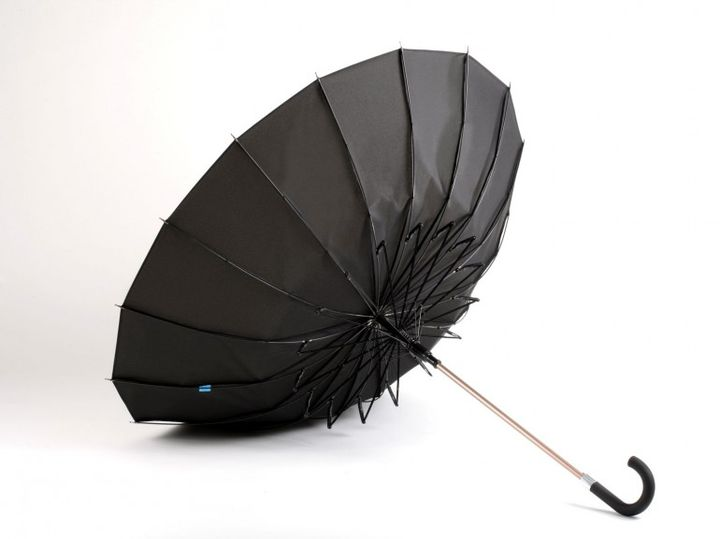 Kisha is modern and more clever than your ordinary umbrella