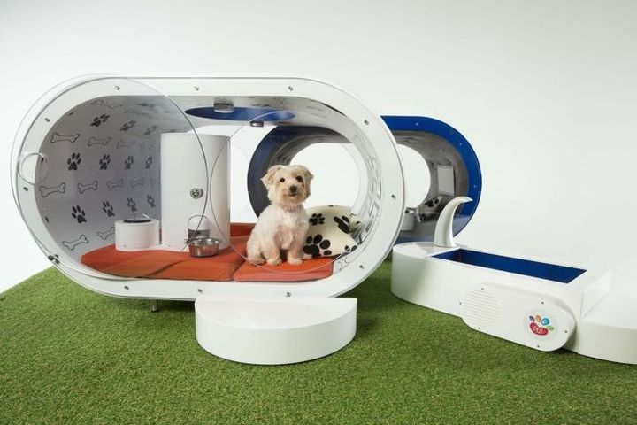 Dream Dog House: new luxury doghouse from Samsung