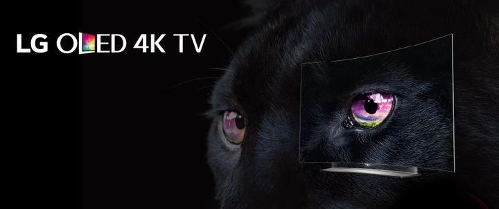 4K OLED-TV LG 55EG960V review