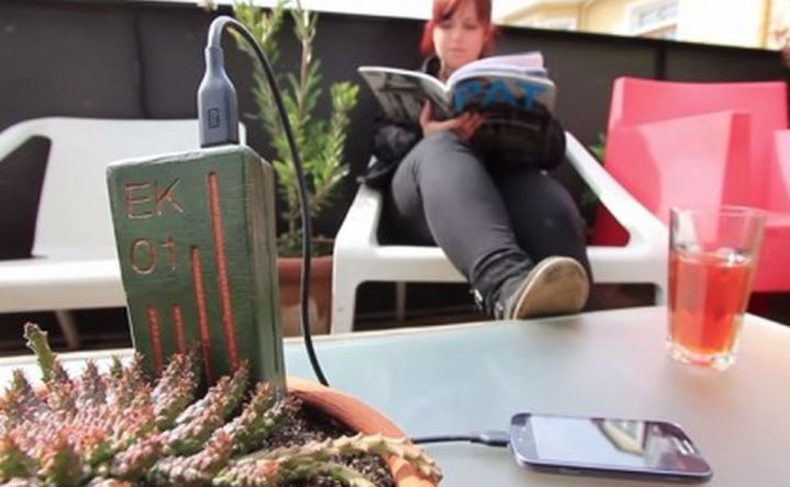 E-Kaia can charge smartphones using plants