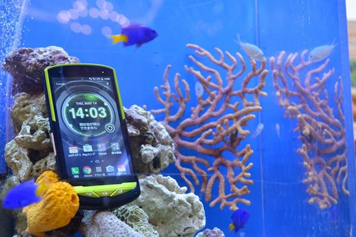 Kyocera Torque G02 works even in seawater