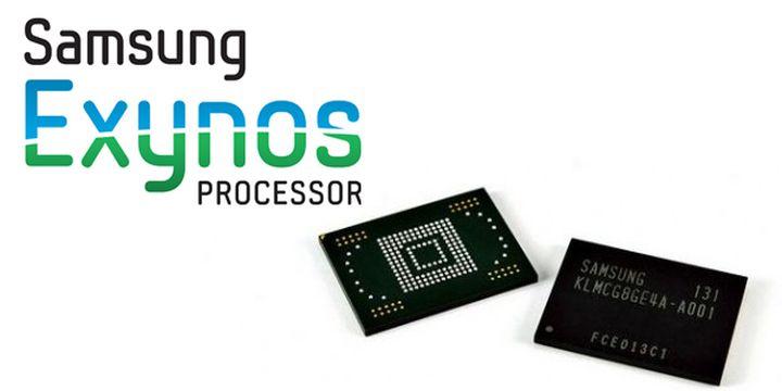 Samsung has postponed plans for the development of Custom Graphics