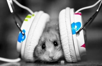 Top 5 unusual headphones that may surprise you